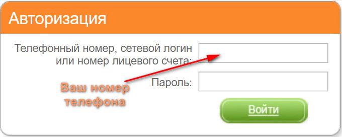 войти в личный кабинет мтс по номеру телефона без пароля и логина в россии микрокредит 24
